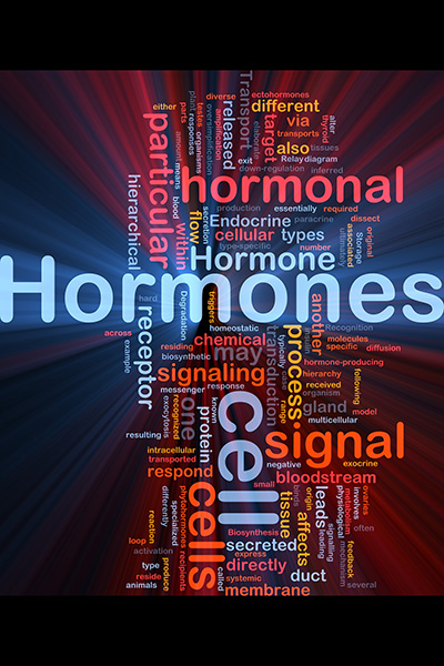 Background concept wordcloud illustration of Hormones hormonal s